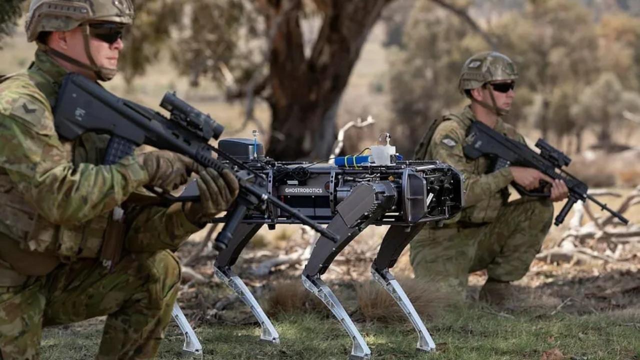 Katil robot köpek