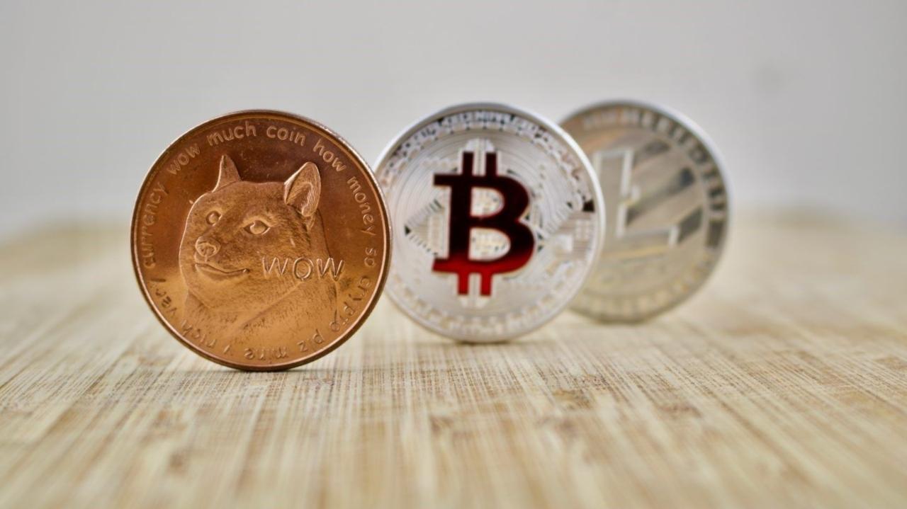 Shiba Inu coin değeri