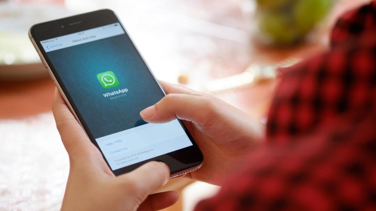 WhatsApp yedekleme özelliği