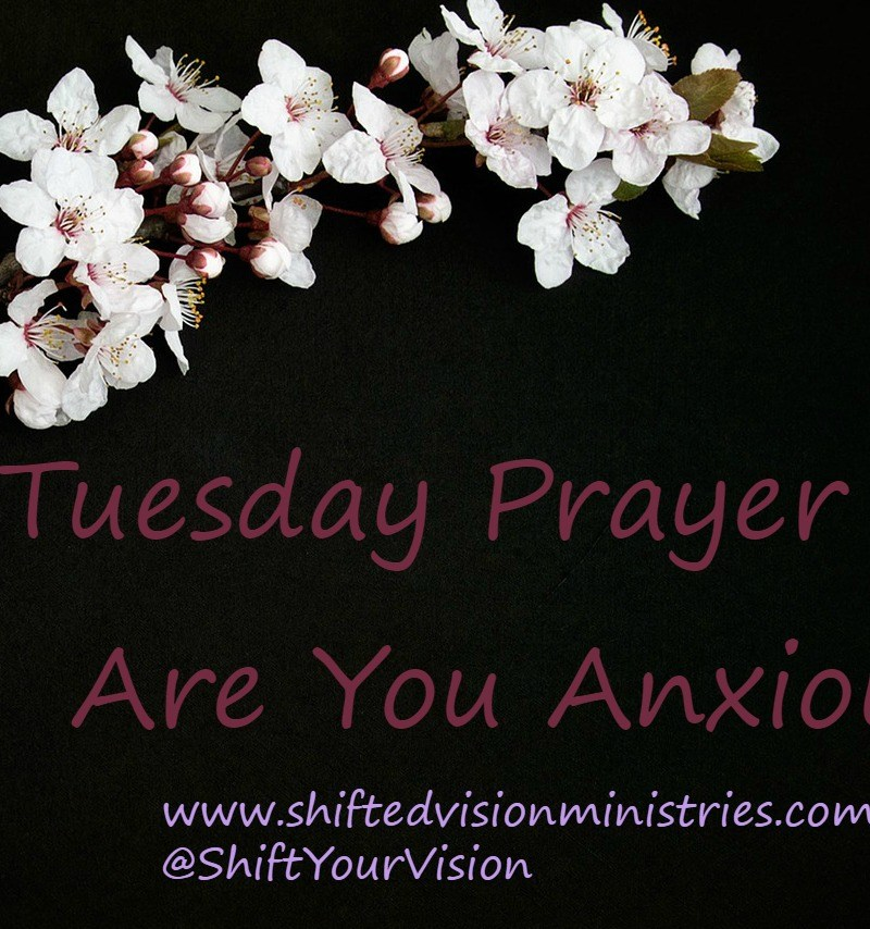 Tuesday Prayer Day are you anxious? Find peace for your anxiety and calm your heart and mind by following God's plan for prayer to bring His peace.