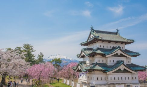 弘前城と桜