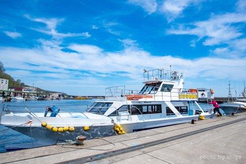 シャチ観光船