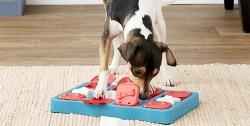 Dog puzzle toys Amazon