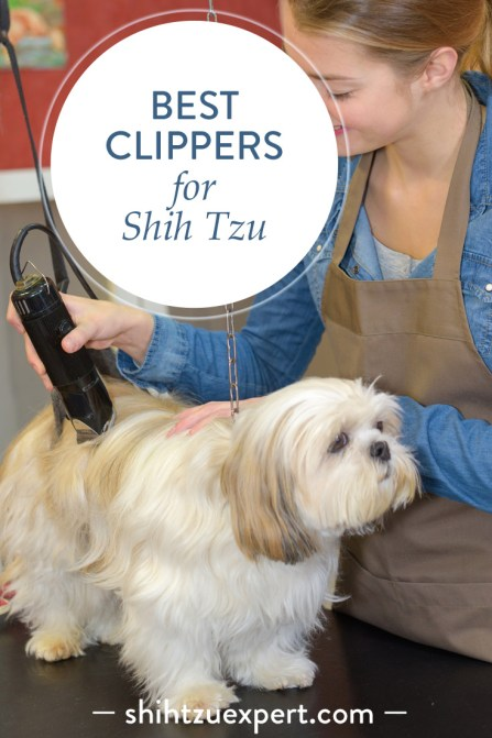 Best clippers for Shih Tzu – Buyer's Guide