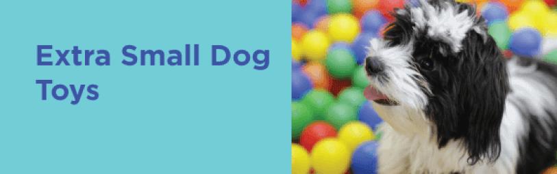 Extra Small Dog toys