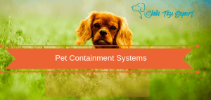 What are the most effective Pet Containment Systems for keeping Your Dog Safe?
