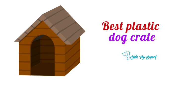 Best plastic dog crate