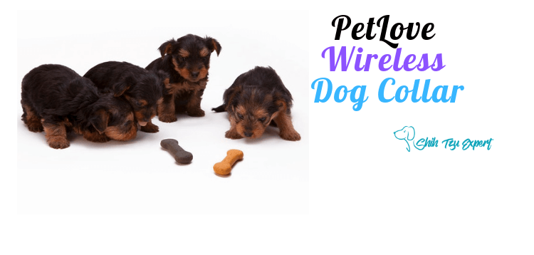 PetLove Wireless