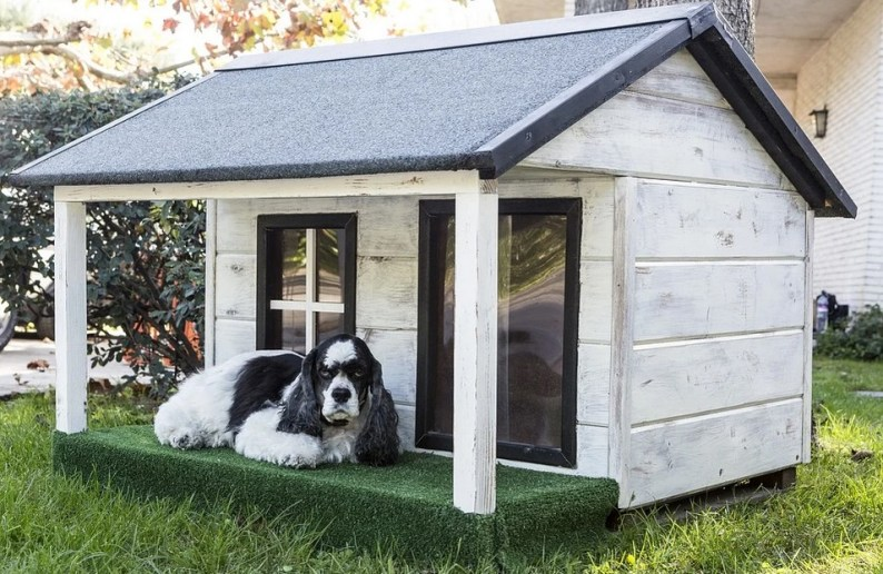 Best Dog Houses for Hot Climates