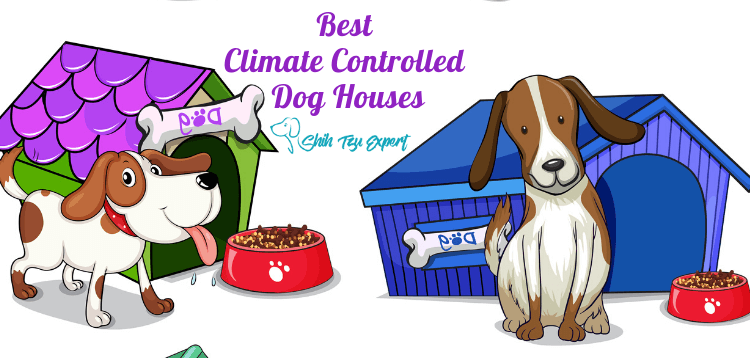 Best Climate Controlled Dog Houses (1)