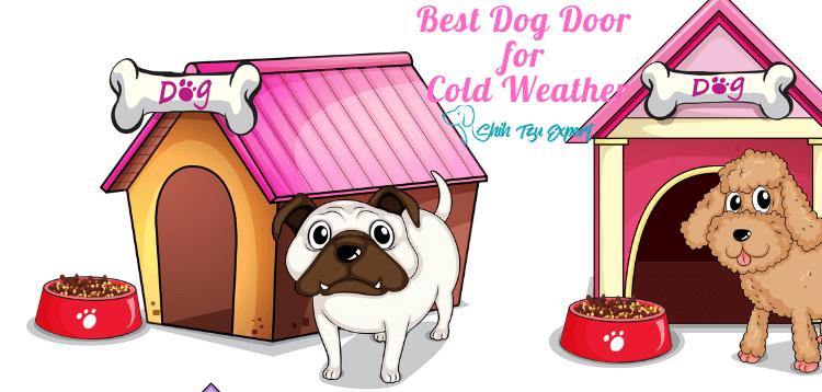 Best Dog Door for Cold Weather (1)