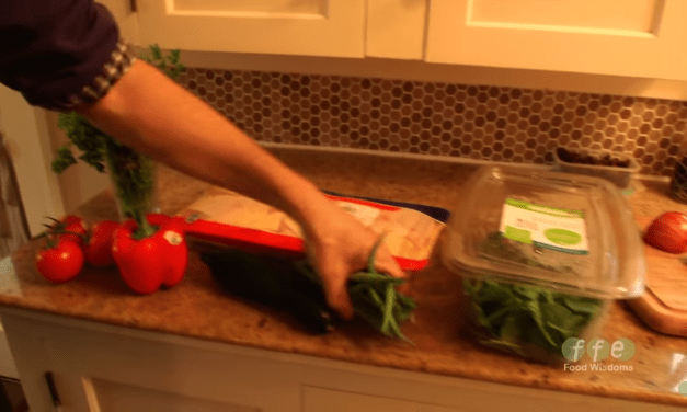 Healthy Foods to Feed Your Shih Tzu