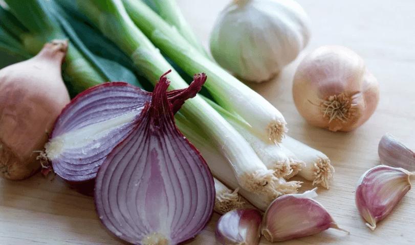 Food That You Shouldn't Give to Your Shih Tzu - ONION, GARLIC, LEEK