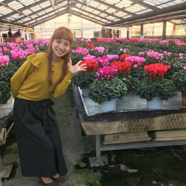 番組出演者の横塚さやかさんと、シクラメンの共演です!#花 #はな #シクラメン  #キレイ #花のある生活 #flower #花が咲くまで  #群馬
