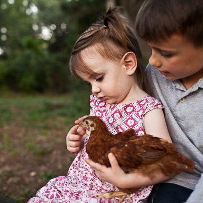 Abel, Emmi & her Chickens :)