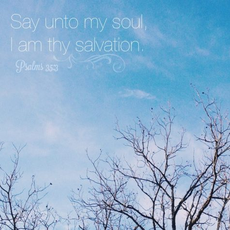 "Favorite Verse this week ""Say unto my soul ""I am thy Salvations"" Psalm 35:3"