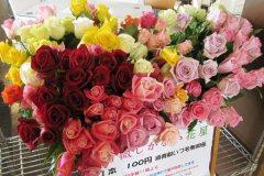 マーケット 薔薇しかない花屋