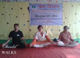 Yoga in Shimla .