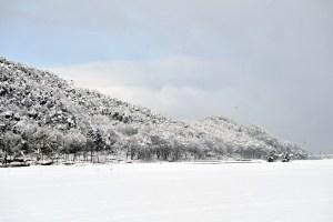 腰越・杓子山(明神山)