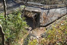 瓶割山(長光寺山)岩倉山峠道-谷筋ルート - 登山道-入口階段