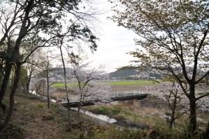白鳥川-雪野山 あらき橋