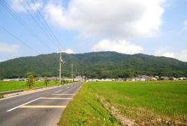 観音寺城-後藤14