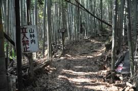 観音寺城-山裾29