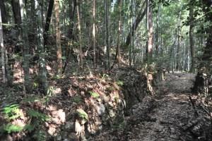 観音寺城-山裾36