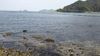 女島河口付近の写真