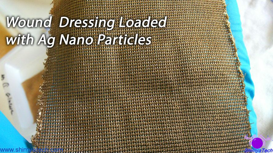 Wound Dressing Loaded with Ag Nano Particles