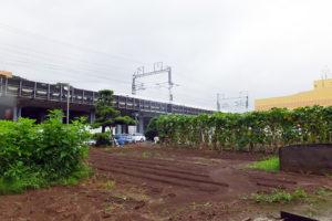 大豆戸町内には農地や駐車場が数多く残っているため、今後も再開発が行われる可能性がある