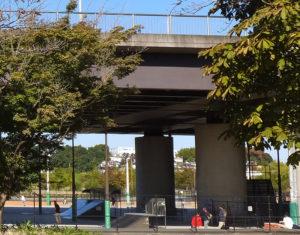 公園内を横切る「国際競技場大橋」の下部にある施設が影響を受ける