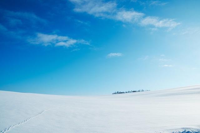 真冬の雪原
