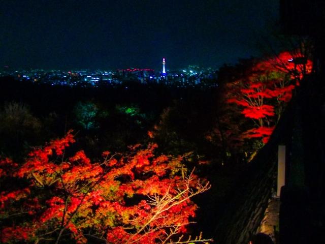 京都の紅葉のライトアップ