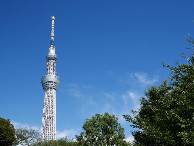 東京スカイツリーと木々
