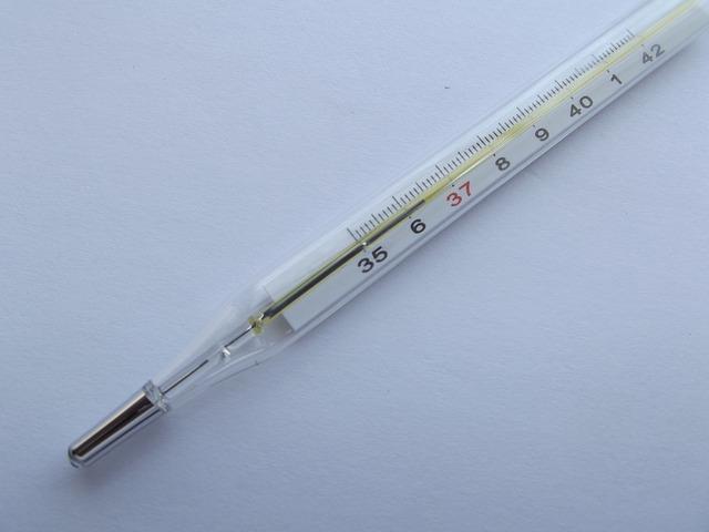 熱を測る体温計