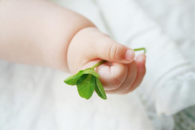 四つ葉のクローバーを持つ赤ちゃんの手