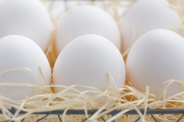 真っ白な卵