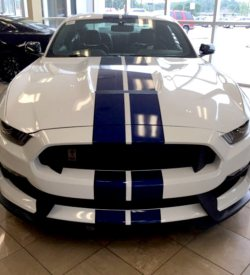 Mustang racing stripes shelby style