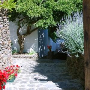 Yoga Retreat Spain Garden