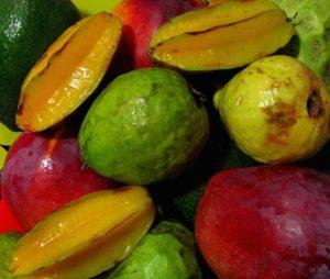 南国フルーツ