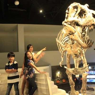 Where to Take Your Kids for a Day Out in Manila?