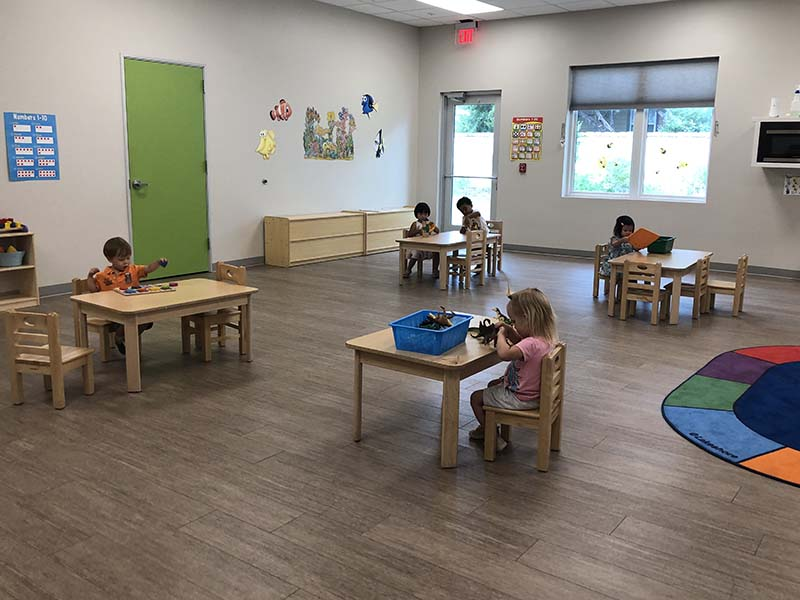 Shining Stars Montessori School Classroom Activities