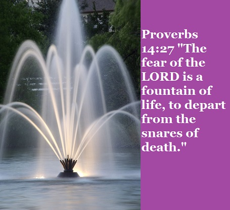 "Proverbs 14:27 ""The fear of the LORD is a fountain of life, to depart from the snares of death."""