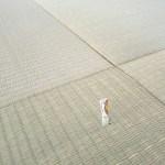 西宮市甲陽園山王町にお住まいのお客様宅の畳の新調入れ替え〜