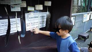 【無料!】江戸川区自然動物園へ行こう!【家族連れにおすすめ!】