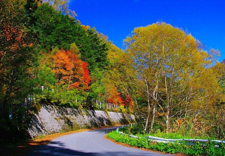 安房峠を越える国道158号旧道の紅葉はまさに絶景