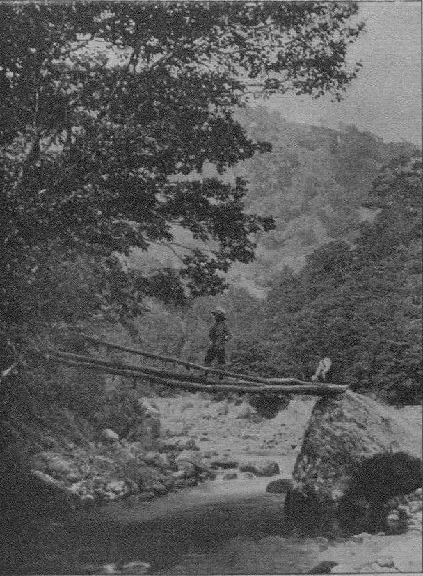 Pole-bridge at the foot of the Abo-toge/(安房峠麓の丸太橋/『日本アルプスの登山と探検』