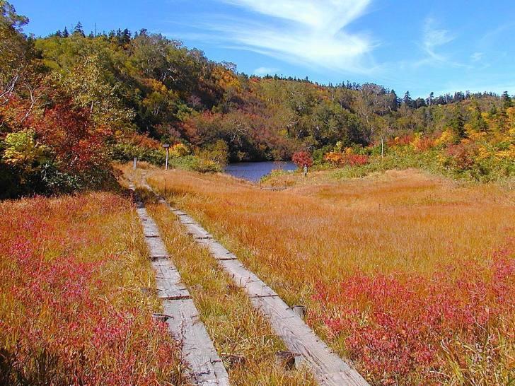 紅葉の風吹大池