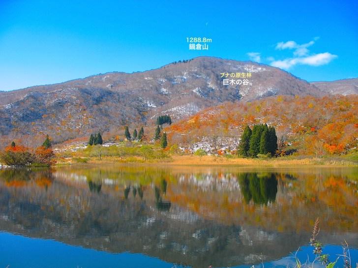 田茂木池から眺めた晩秋の鍋倉山